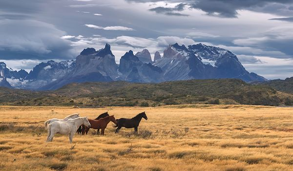 Parc national Torres del Paine - Chili - Sunsinger/stock.adobe.com