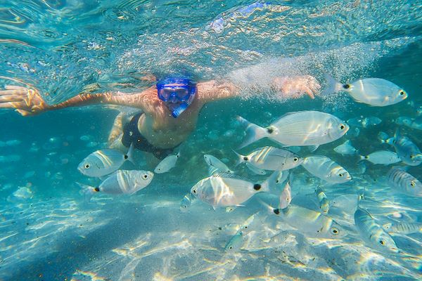 Snorkeling - gevisions / stock.adobe.com