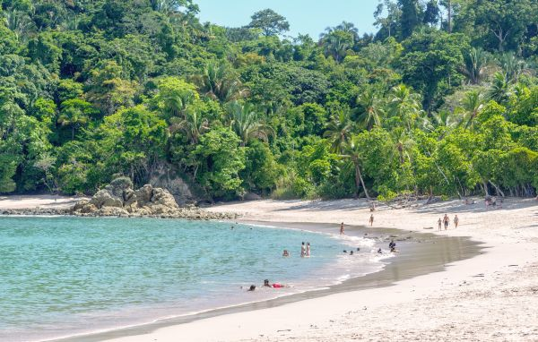 Parc national Manuel Antonio - Costa Rica - StereoVision/Fotolia