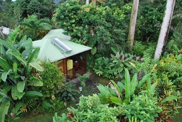 S jour baln aire au c ur d 39 un jardin tropical guadeloupe for Jardin tropical guadeloupe