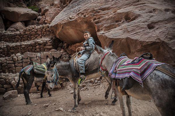 Voyage jordanie sur mesure vacances jordanie en immersion - Comptoir de famille st jean de soudain ...