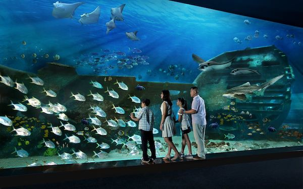 S.E.A. Aquarium - Singapour - Resorts World at Sentosa Pte