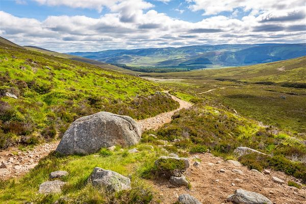 Parc National des Cairngorms - Grantown On Spey - Ecosse - Royaume-Uni - A. Karnholz / fotolia.com