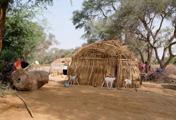 Village Peul - Région de Saint-Louis - Sénégal - Maryline Goustiaux