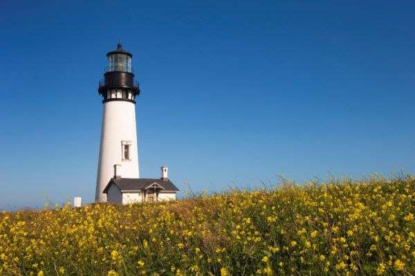 Yaquina Head Lighthouse - Newport - Oregon - Usa - Greg Vaughn