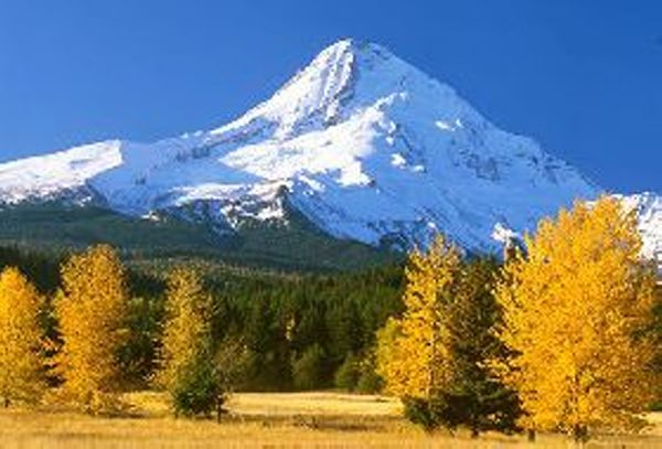 Mount Hood - Oregon - Hood River Chamber