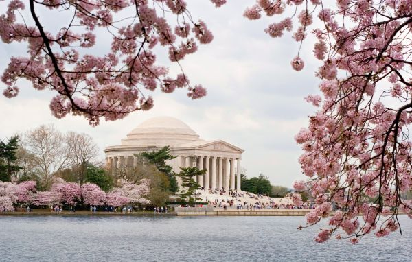 Jefferson Memorial - Etats-Unis - Capital Region USA