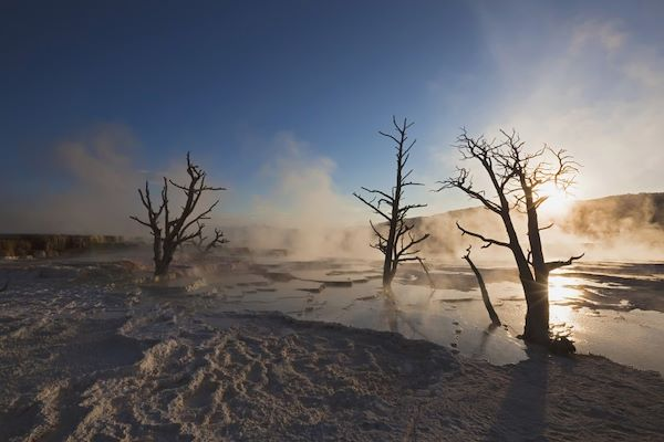 Mammoth Hot Springs - Yellowstone National Park - Wyoming - Etats-Unis - Fotofeeling / AGE Fotostock