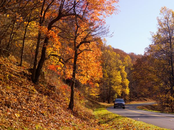The Blue Ridge Parkway in Virginia. George Washington National Forest. - Cameron Davidson.Virginia/Tourism Corporation