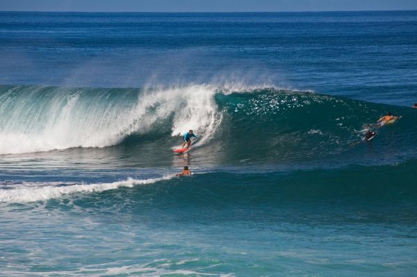 Surf sur la côte nord - Oahu - Hawaï - Hawaii Tourism Authority