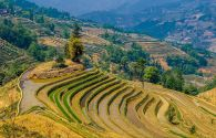 Trésors du Yunnan - Chine -