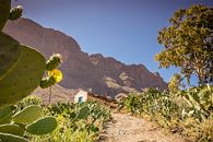 Sentiers canariens - Espagne -