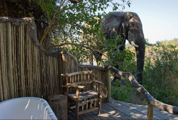 Little Vumbura - Delta de l'Okavango - Wilderness Safaris