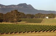 Hunter Valley - Autralie - Wine Country
