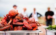 Homards - Canada - © Office du tourisme de l'Î.-P.-É./Stephen Harris
