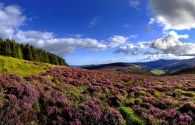 Montagnes de Wicklow - Irlande - Chris Hill / Tourism Ireland