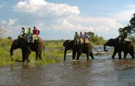 Toka Leya Camp - Livingstone - Zambie - Wilderness Safaris