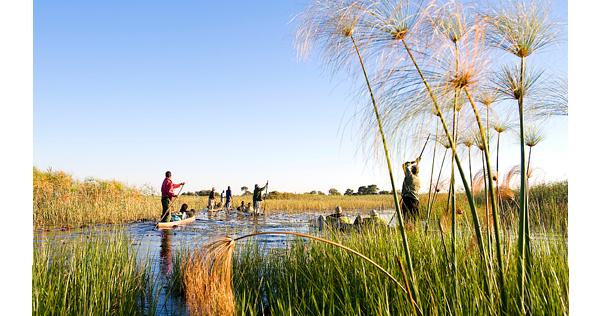 Traversée du delta de l'Okavango en mokoro – Botswana